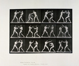 Nude male athletes boxing, c 1872-1885.