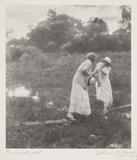 'The Marshy Spot', c 1910.