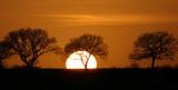 Sunset, 2007.