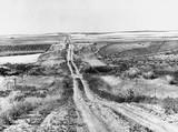 Wheat and corn fields, Montana, USA, August 1941.