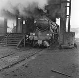 BR locomotive No.60081 Shotover