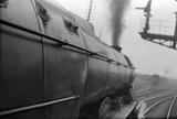 BR locomotive No.60036,  from footplate ECML race track Banjo Dome. England, c.1952. East Coast Main Line. Colombo, England, 1935-78.
