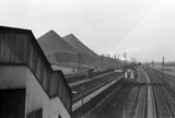 Stanton Gate Station. Derbyshire, England, 1952.