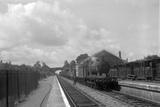 Swimbridge, up goods c.1950