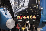 Bittern 4464 Front Number