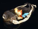 Shrunken head with long hair, decorated with bird's heads, by Jivaro tribe. Ecuador.
