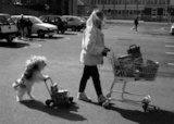 Lhasa Apso dog and woman shopping (B&W)