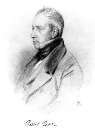 Robert Brown, British plant taxonomist, c 1830s.