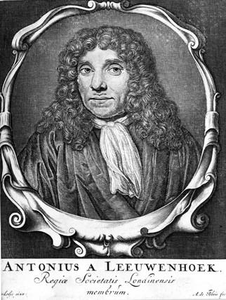 Antoni van Leeuwenhoek, Dutch pioneer of microscopy, c 1660.