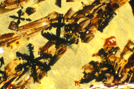 Iron Slag. Light micrograph in darkground l