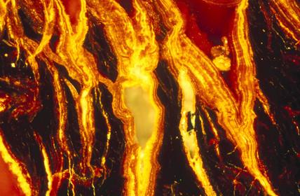 Iron oxide. Light micrograph in cros polar
