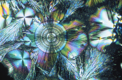 Ascorbic acid, light micrograph, 1990s.