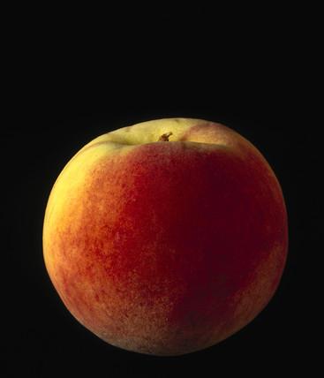 A peach, 1990s.