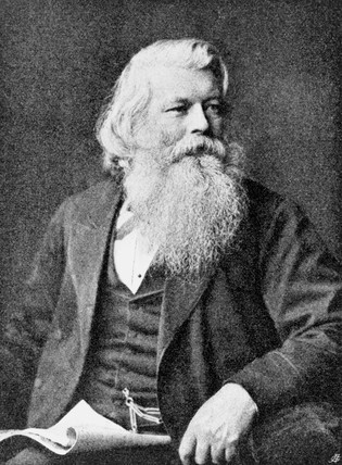 Sir Joseph Wilson Swan , English scientist and inventor, late 19th century.