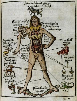 Zodiacal man, 1535.