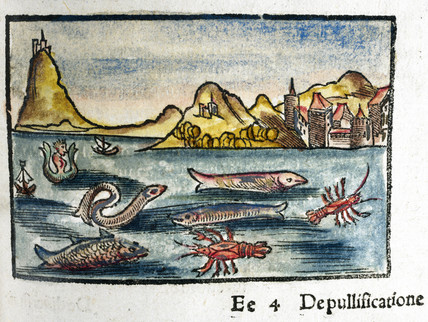 Creatures of the sea, 1535.
