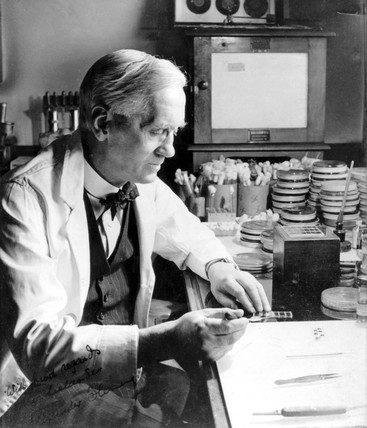 Profesor Alexander Fleming, Scottish bacteriologist, c 1930.