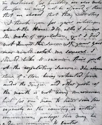Letter from John Hunter to William Eden, 1784.
