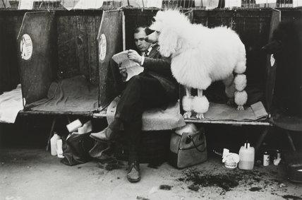Cruft's Dog Show, London, 1968.