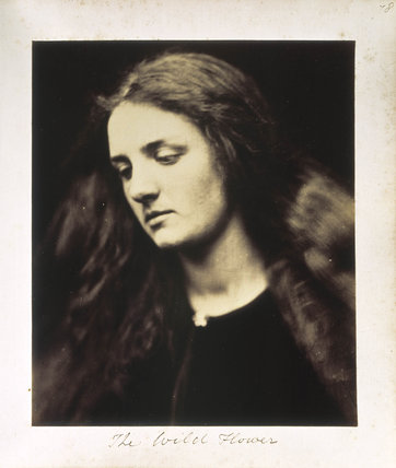 'The Wild Flower' by Julia Margaret Cameron, 1867.
