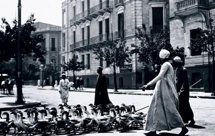 Arab herdsmen escorting geese acros a street in Egypt, c 1910s.