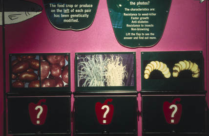 Exhibition panels from Future Foods, a temp