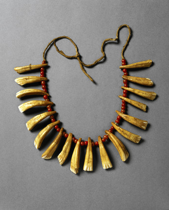 Necklace with horse teeth, Chippewa Indians, 1901-1920.