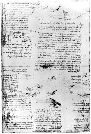 Sketches showing the flight of birds from Leonardo da Vinci's notebooks, 1470-1520.