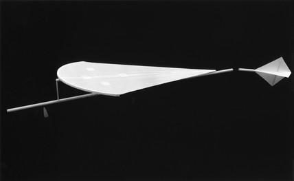 Cayley's glider, 1804.