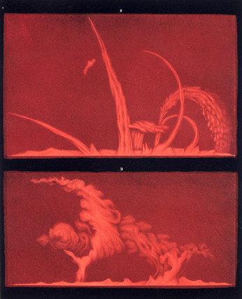 Solar prominences, Plate 9, 1872.