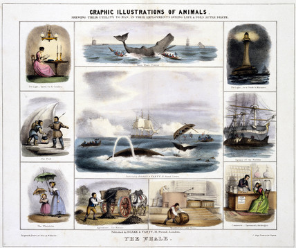 'The Whale', c 1845.