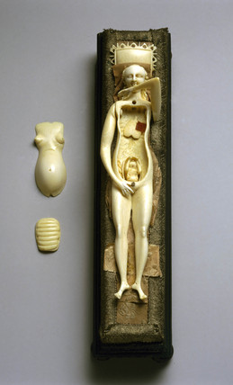 Anatomical figure of a pregnant woman, c 18th century.