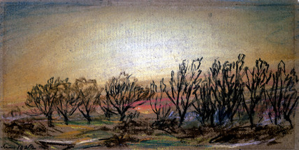 Afterglow following sunset, 10 May 1884.