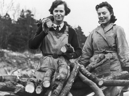 Forestry landgirls, 2 January 1940.
