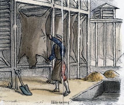 'Hide Tanning', c 1845.