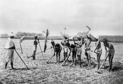 Turning up the land, Allahabad, India, 1877.