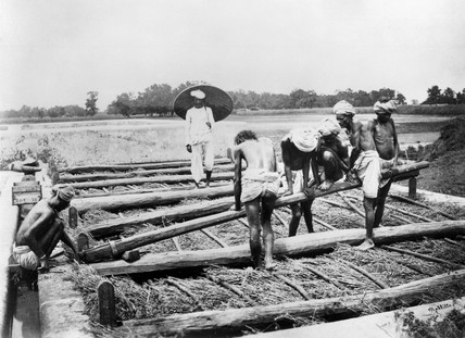 Loading a vat with indigo, Allahabad, India, 1877.