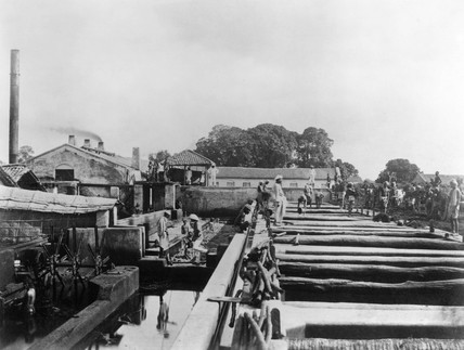 Indigo factory, Allahabad, India, 1877.