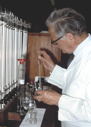 Sir Hans Krebs 'pipetting', 1973.
