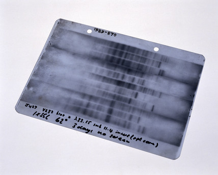 First genetic fingerprint, 1984.
