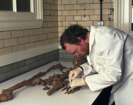 Skeleton of Bleadon Man, 1999.