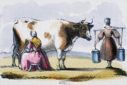 'Milk', c 1845.