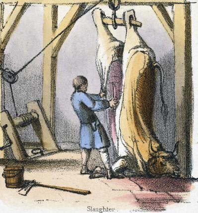 'Slaughter', c 1845.