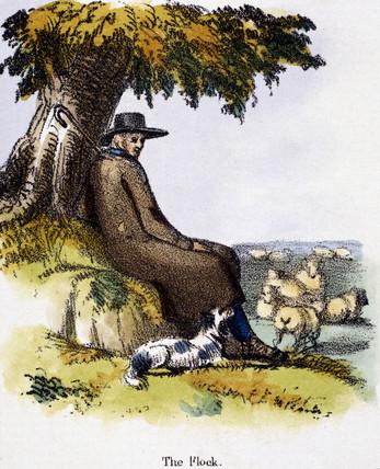 'The Flock', c 1845.