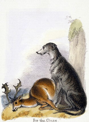 'For the Chase', c 1845.