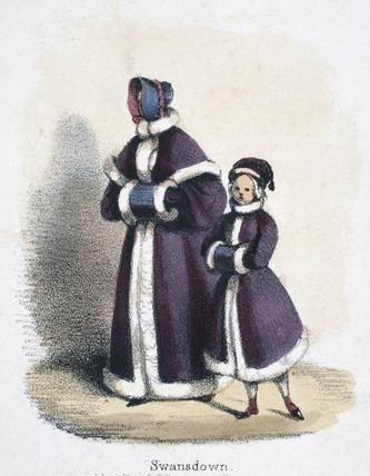 'Swansdown', c 1845.