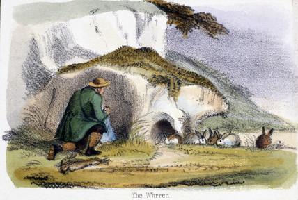 'The Warren', c 1845.