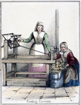 'Reeling Cocoons', c 1845.