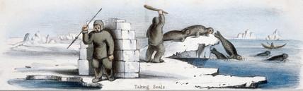 'Taking Seals', c 1845.