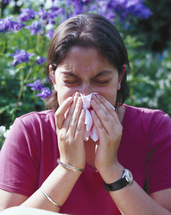 Hay fever sufferer sneezing, London, May 2000.